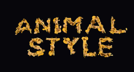 Animal Style Ringtone Download Free