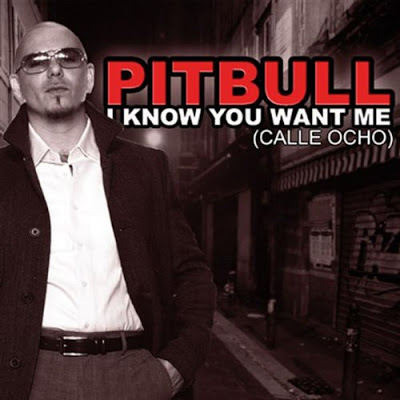 I Know You Want Me (Calle Ocho) 2009 Ringtone Download Free