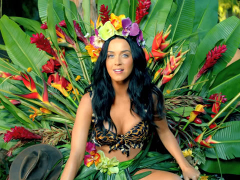 Roar Ringtone Download Free