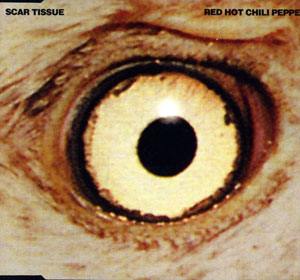 Scar Tissue Ringtone Download Free