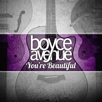 You're Beautiful Ringtone Download Free