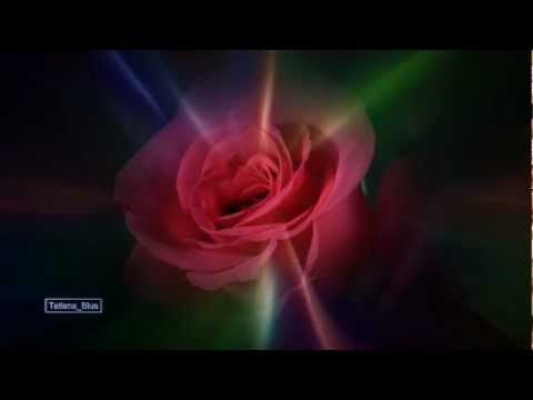 The Rose Ringtone Download Free