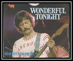 Download wonderful you free tonight look mp3 Wonderful Tonight