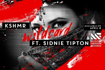 Wildcard Ringtone Download Free