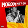 Nobody Has To Know Ringtone Download Free