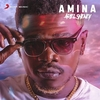 Amina Ringtone Download Free