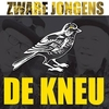 De Kneu Ringtone Download Free