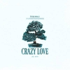 Crazy Love Ringtone Download Free