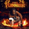 Flammable Ringtone Download Free
